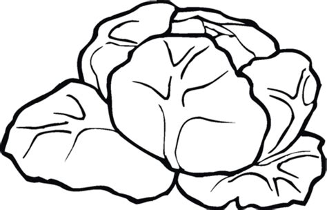 Lettuce 6 Coloring Page Supercoloring Com Lettuce Coloring Page