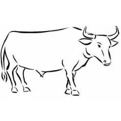 Riding Ox Coloring Pages sketch template