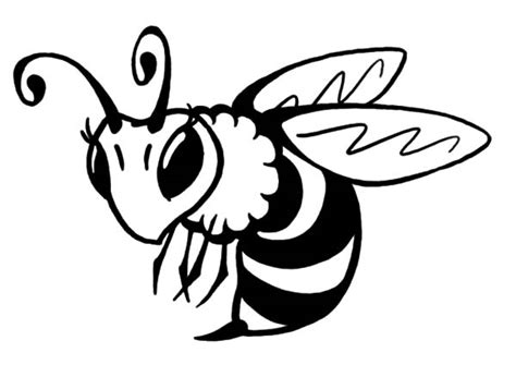 bee color bee coloring picture www imgkid the image kid has it