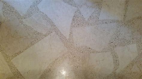 Terrazzo Masters: Artisanal Terrazzo, Polished Concrete