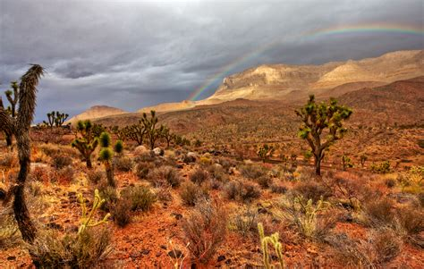arizona landscape hualapai canyon kelli williams flickr