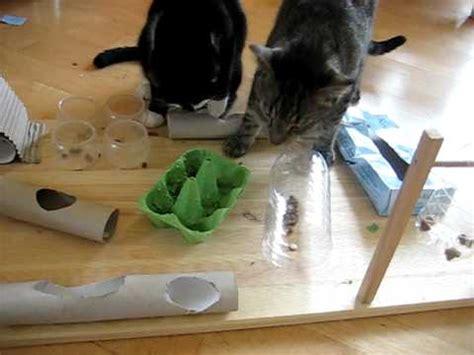 fummelbrett fuer katzen selbstgebastelt youtube