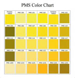 what are pms colors 25 best pms color chart ideas on pantone