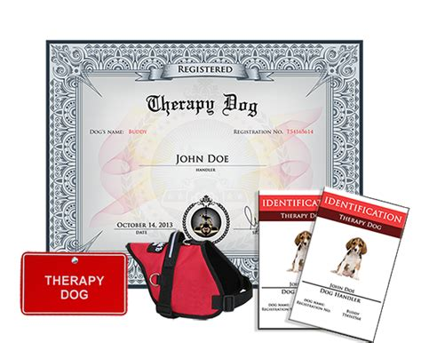 therapy registration therapy complete kit 187 us registry