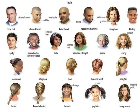 number 8 guide haircut image english without tears at the beauty salon worksheet