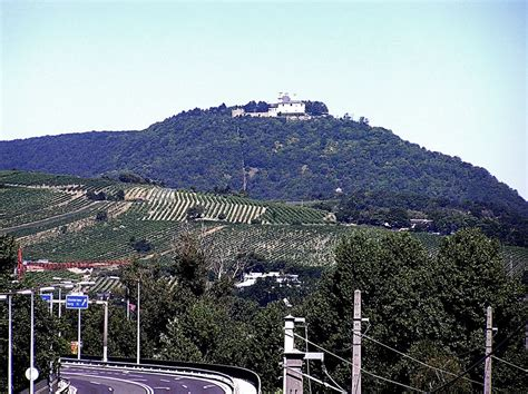 Google Pod panoramio photo of kahlenberg po polsku ysa g 243 ra