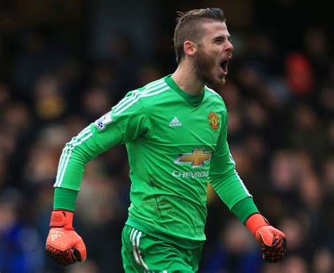 epl best goalkeeper the premier league team of 2015 daily star