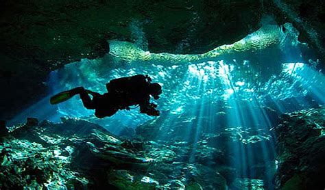 dive packages scuba diving packages