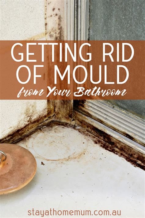 how to get rid of mold around bathtub getting rid of mould from your bathroom stay at home mum
