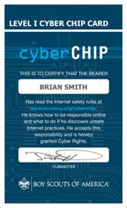Cyber Chip   MeritBadgeDotOrg