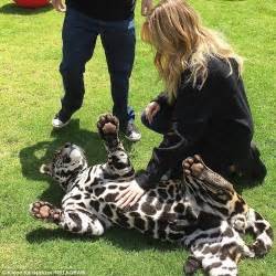 jaguars play in khloe and kendall jenner play with rescued baby