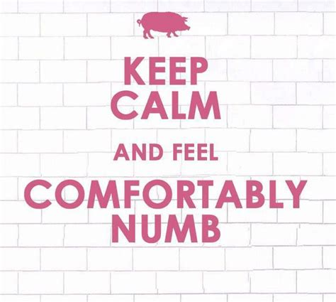 comfortably numb cover 212 best images about pink floyd on pinterest pink floyd