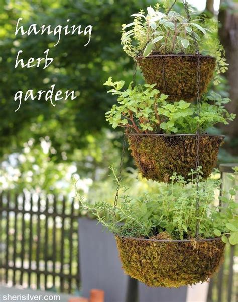 diy hanging herb garden diy hanging herb garden gardening pinterest