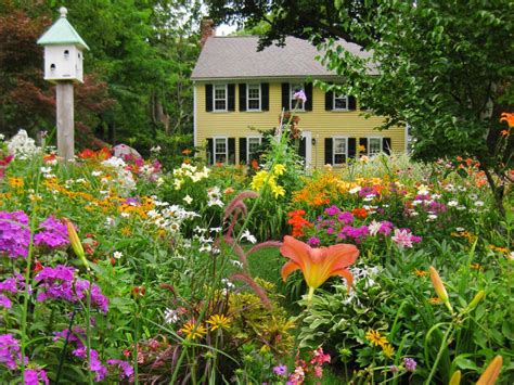 wildflower backyard gorgeous landscapes landscaping ideas and hardscape