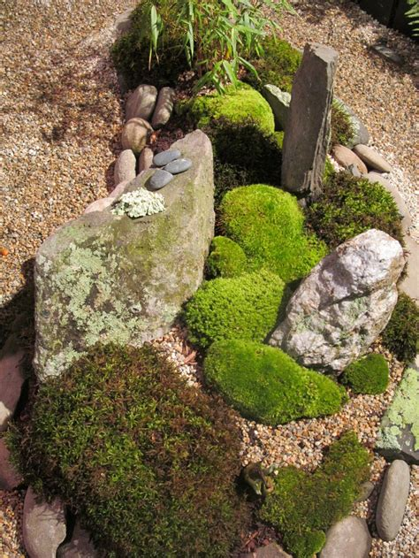 rock garden show small rock garden with moss picture taken at the 2013