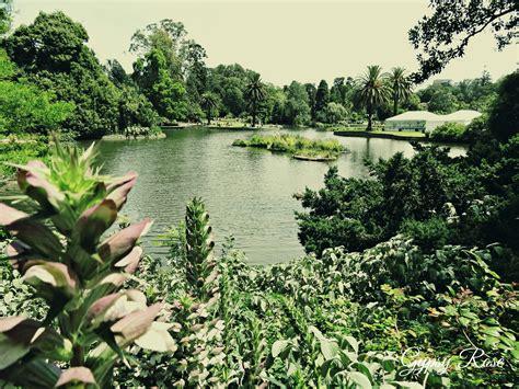 Botanical Gardens Cost Australian National Botanic Gardens Cost Garden Ftempo