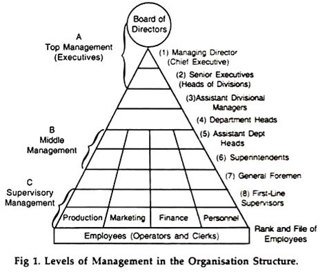 levels of management (with diagram)