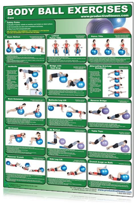 printable exercise ball routines balance ball bosu charts stability swiss ball exercise