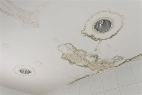 How To Fix Water Stains On Ceiling by How To Fix Ceiling Water Stains Home Improvement