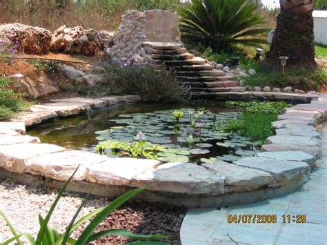 how to make a fish pond in your backyard triyae com build a homemade pond filter various design