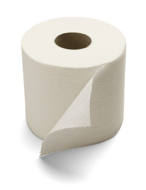 How They Make Toilet Paper - toilet paper harlow