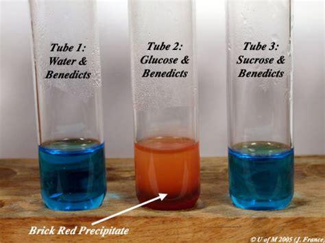 test scienze biologiche 2014 chimica organica sun cdl scienze biologiche laboratorio