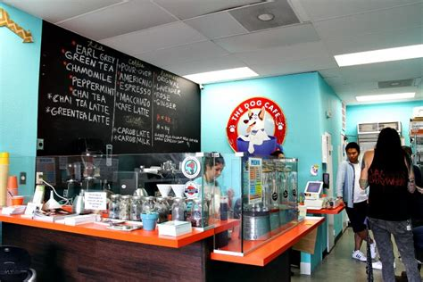 puppy cafe los angeles the cafe coffee cups rescue pups in los angeles
