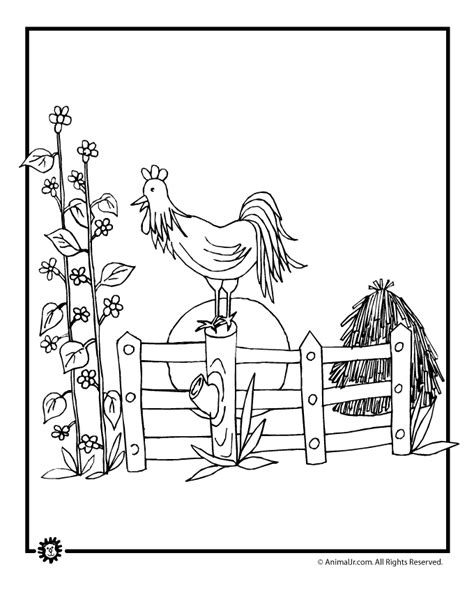 free barn animal coloring pages coloring home