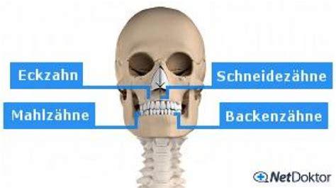 zahnschmerzen liegen zahnschmerzen ursachen und tipps netdoktor de