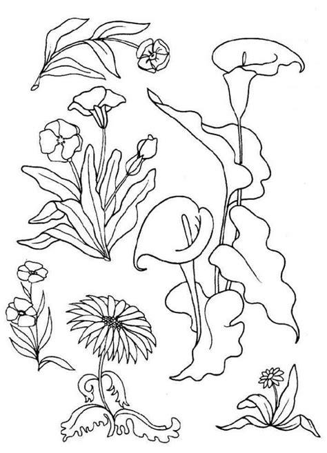 dibujos infantiles para colorear de flores imagenes de flores para colorear y dibujar