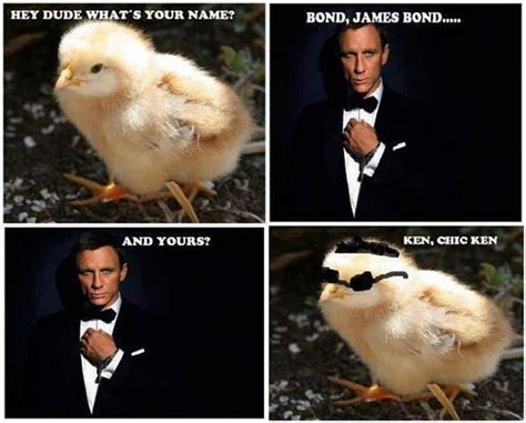 James Bond Meme - james bond quotes humorous quotesgram