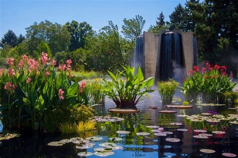 Cheesman Park Neighborhood Favorites Denver Realestate Botanic Garden Denver