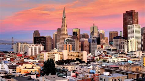 Of California San Francisco Mba by School Of Management Of San Francisco