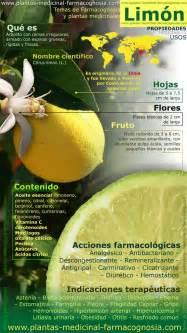 vida y salud natural facebookcom 116 mejores im 225 genes sobre plantas medicinales en