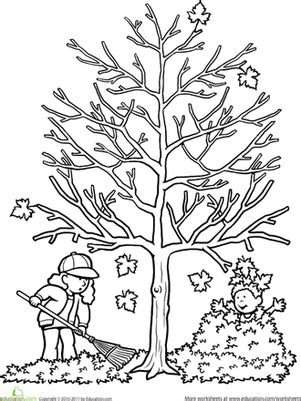 coloring pages of autumn tree autumn tree worksheet education com
