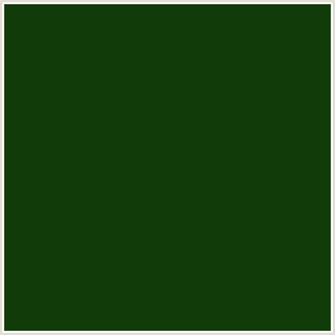 dark colors 113b08 hex color rgb 17 59 8 dark fern green