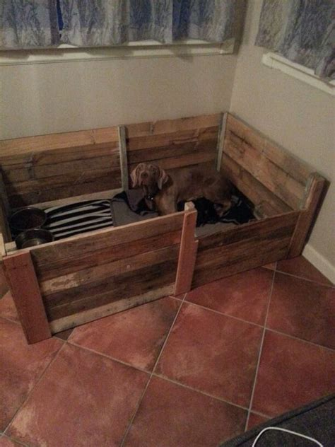 Boxes For Dogs Picture More - pallet welping box weimerwiner my creations