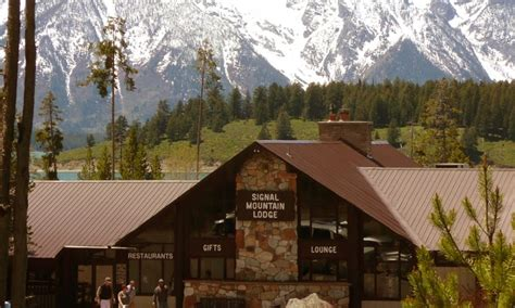 Lodging In Wyoming Cabin by Signal Mountain Lodge Wyoming Grand Teton National Park