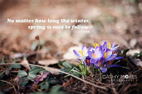 ready for spring who s ready for spring cathy mores photography
