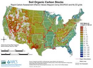 storing carbon in the soil through regenerative farming
