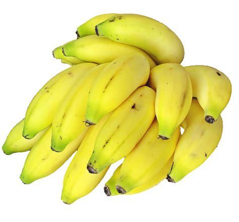 Best Quality E Liquid Forbidden Custard Banana 60ml 3mg banana flavour e liquid vapour days