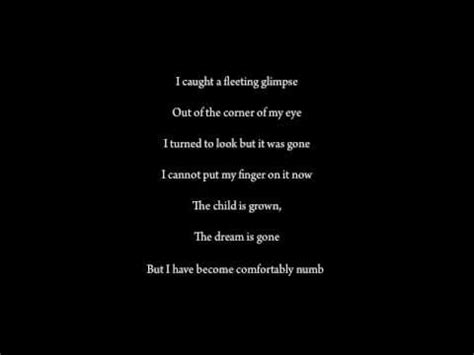 lyrics for comfortably numb comfortably numb pink floyd w lyrics youtube