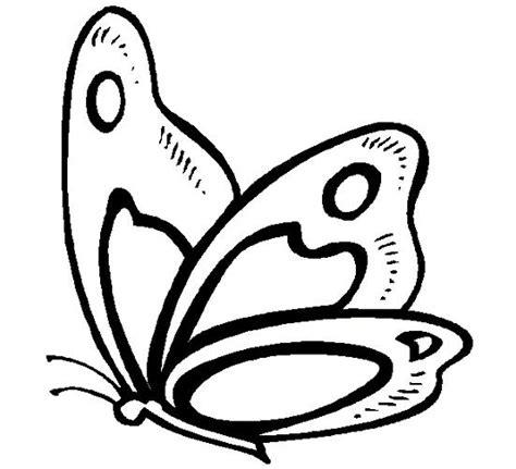 imagenes mariposas hermosas animadas mariposas para colorear peque 241 as hermosas mariposas para