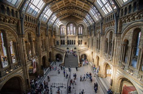 amsterdam museum of natural history natural history museum nearest train station to natural