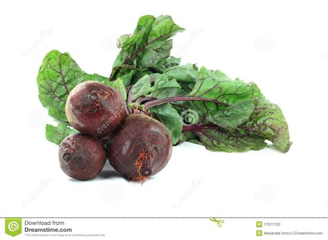 ediblr raw roots edible nutritious roots beets with leaves stock photo image 17011120