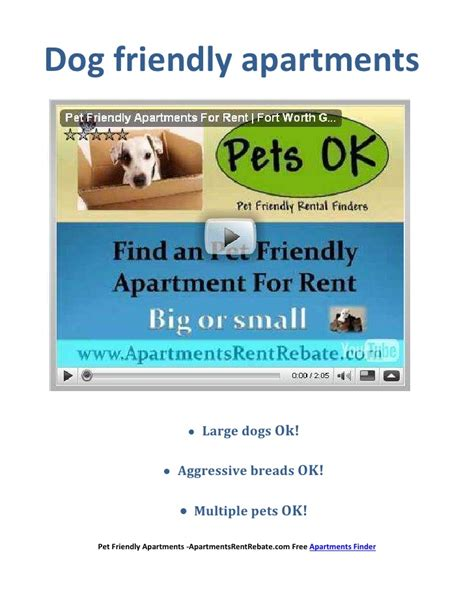 apartments for rent that allow dogs friendly apartments friendly apartments for rent