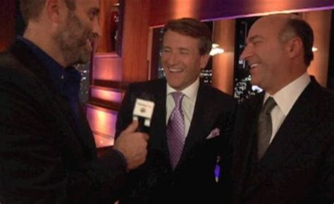 robert herjavec bald kevin o leary and robert herjavec why shark tank is