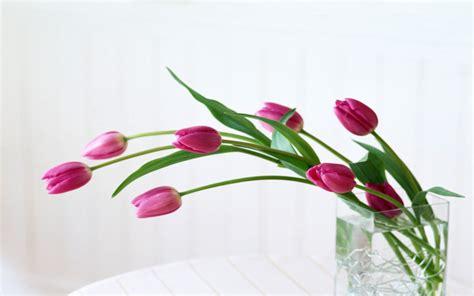 cornici fiori come rendere la casa pi 249 e aumentarne il valore