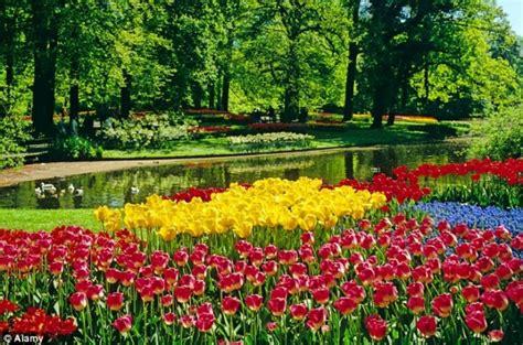 Flower Garden Netherlands Beautiful Flower Garden In The Photos Of Beautiful Flower G