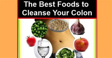 Foods That Detox Your Colon by The Best Foods To Cleanse Your Colon